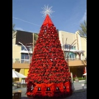 32' Poinsettia Tree