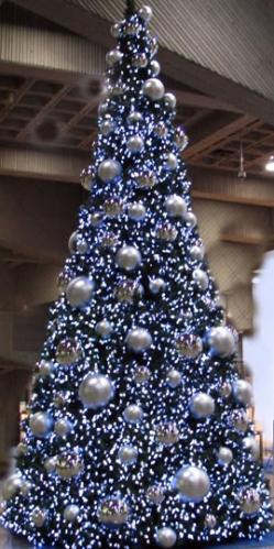 22' Montreal Tree