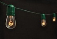 Green Patio Light String