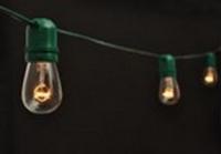 Green Patio Light String