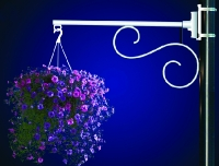 Flower Basket Holder Single Scroll